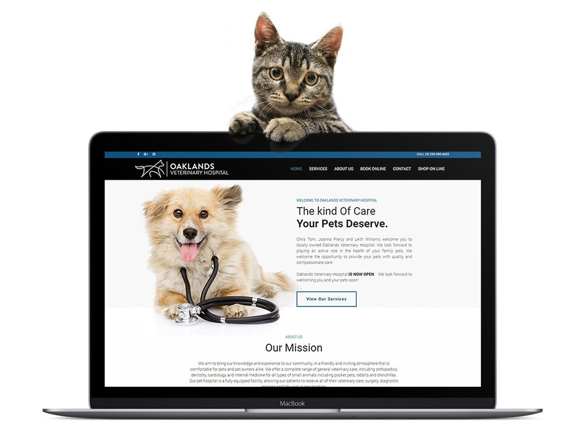 Veterinarian Website Design Example